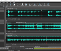 Wavepad Audio and Music Editor Pro Скриншот 0