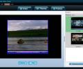 Socusoft Web Video Player Скриншот 0