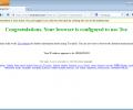 Tor Browser Скриншот 9